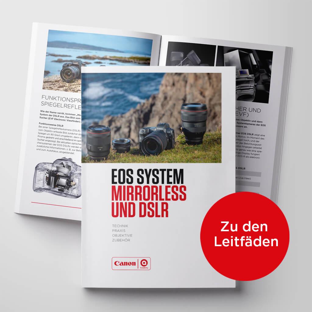 Canon Academy EOS SYSTEM MIRRORLESS UND DSLR - Technik Praxis, Objektive und Zubehoer